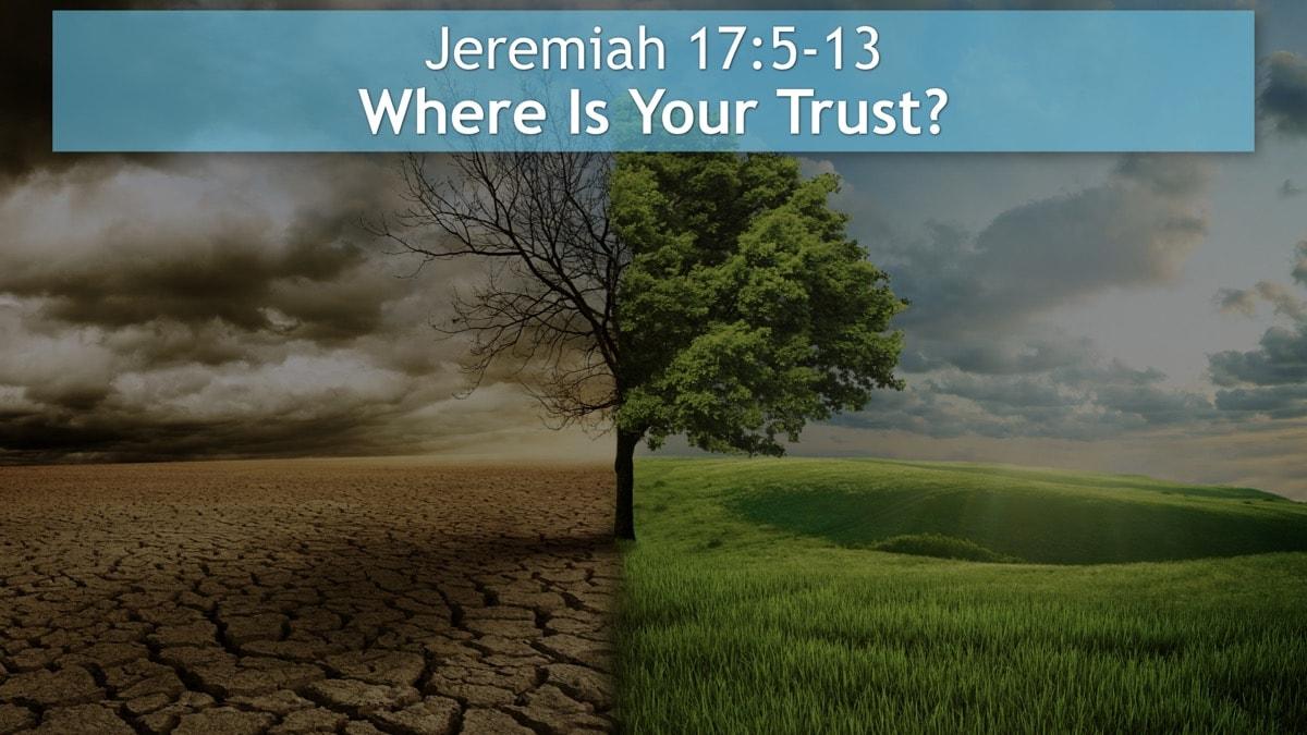 Jer. 17:5-8 Gewone mense kan nie help nie